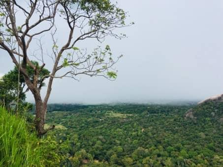 Que faire pendant votre voyage au Sri Lanka